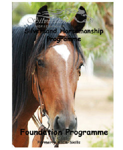 foundation skills dvd set